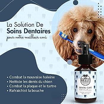 Belly Dentifrice Chien en Spray - Soins des Dents pour Chiens - Produit Naturel d'Hygiène et Santé du Chien - Action Anti Tartre et Mauvaise Haleine - Alternatif à la Brosse a Dent Chien, 100 ML