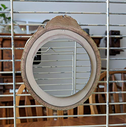 dcDalton Birdcage Mirror 3 Inch Glass on 4 Inch Natural Wood Slice