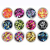 NUOBESTY Nail Chunky Glitter Circle Confetti Glitter Powder Sequins para uñas faciales y capilares (12 Colores, Circle-Mix)