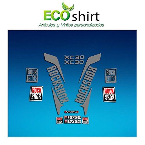 Ecoshirt PL-WTWK-IGQQ Aufkleber Stickers Fork Rock Shox Xc30 2017 Am169 Decals Autocollants Adesivi Forcela, Silber