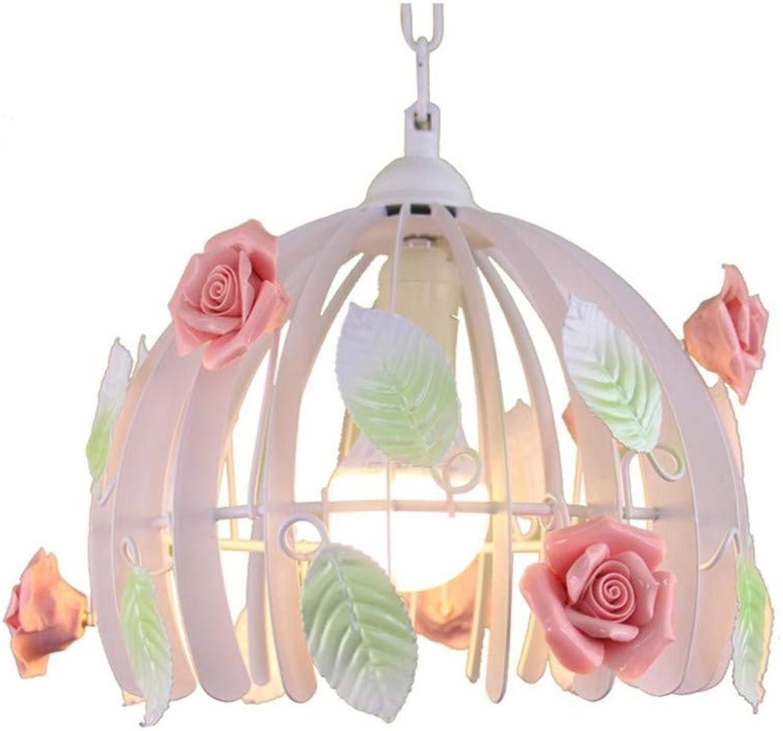 Intérieur Lustres Luminaires Eclairage De Plafond Personnalité Créative Restaurant Lustre Idyllique Lustre à Une Tête En Fer Forgé (32Cm  25Cm)