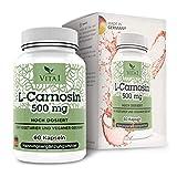 Vita 1 L-Carnosine 500 mg 60 Capsules (Monthly Pack) Gluten Free, Vegan, Kosher & Halal, 36 g