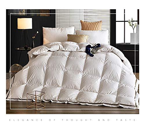 CHOU DAN revital daunendecke daunen und reinem Bedsure Bettdecke 135x200 cm 4 Jahreszeiten