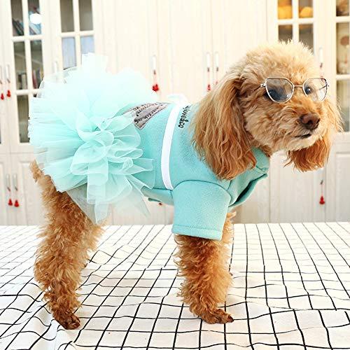 MeterMall Temperament Haustier Gauzy Kleid für Katze Hunde Teddy Schnauzer Zwergspitz