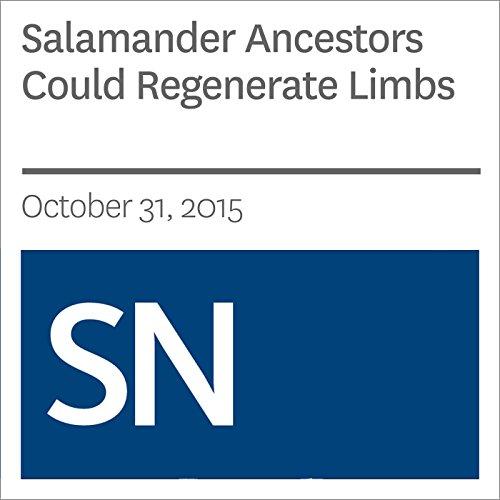 Salamander Ancestors Could Regenerate Limbs cover art