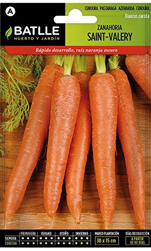 Semillas Hortícolas - Zanahoria Saint Valery muy precoz - Batlle