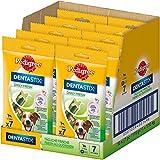 Pedigree DentaStix Fresh Hundesnack für kleine Hunde (5-10kg), Zahnpflege-Snack mit Eukalyptusöl und Grüner Tee-Extrakt, 10 Packungen je 7 Stück (10 x 110 g)