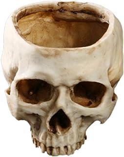 HOMYL Creative Human Skull Planter Flower Pot Home Office Plant Decor Flowerpot
