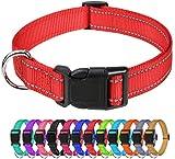 TagME Collar Perro Ajustable,Collar Nylon Reflectante,para Caminar Correr Entrenamiento,para Perros Extrapequeños,Rojo,1.5cm De Ancho