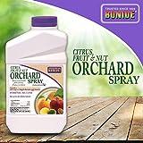 BONIDE PRODUCTS INC 037321002185 Bonide 218 Concentrate Citrus Spray, 32 Fl Oz, LAWNGARD