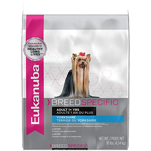 Eukanuba Breed Specific Yorkshire Terrier Dry Dog Food, 10 lb