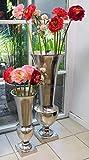Michael Noll Vase Blumenvase Gefäß Pokalvase Dekovase Aluminium Silber Aluminium - Bodenvase für Kunstblumen und Pampasgras - 52 cm / 80 cm (20x20x52 cm)