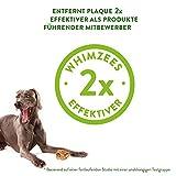 Marengo Zahnbürste XS, 1er Pack (1 x 360 g) - 3