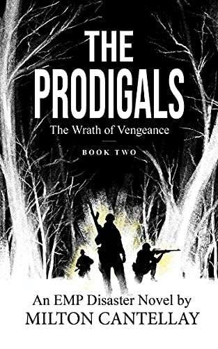 The Prodigals: The Wrath of Vengeance (English Edition)