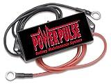 Pulsetech PowerPulse Battery Maintenance System, 12V