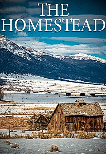 The Homestead EMP: EMP Survival in a Powerless World (English Edition)