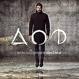 Destino (2 LP-Vinilo)