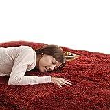 Enkoo ヨーロピアンピュアカラーソフトラグソフトふわふわ毛深いウォッシャブルカーペットソフトタッチシャギーラグ、厚く豪華なラムベルベットふわふわエリアラグカーペット寝室用ベビールーム屋内エリアルームカーペット160x230cm (Color : Chestnut red 160*230cm)