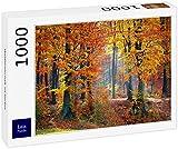 Lais Puzzle Paisaje Forestal en otoño 1000 Piezas
