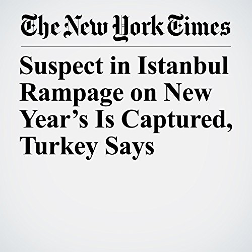 Suspect in Istanbul Rampage on New Year's Is Captured, Turkey Says copertina