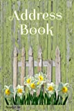 """ADDRESS BOOK: Ample space for name, address, work, fax, mobile, email, and a note - pretty Daffodil Flowers and Shabby Chic Fence - 6"""" x 9"""""""
