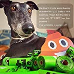 PET N PET Earth-Friendly 1080 Counts 60 Rolls Large Unscented Dog Waste Bags Doggie Bags Green Color 12