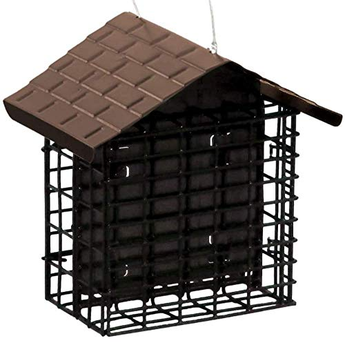 10 best suet and seed feeder for 2020