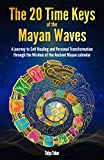 The 20 Time Keys Of the Mayan Waves