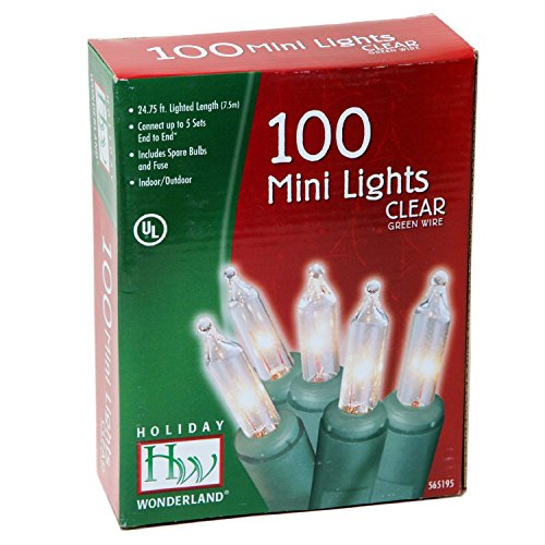 Noma/Inliten Holiday Wonderland 100-Count Clear Christmas Light Set (2-pack)
