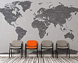 Large Grey World Map Wall Mural Simple Peel and Stick Mural on amazon
