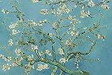 SuperPower Tranquilla Arte 1000 pezzi Fioritura di Fiori di Albicocca di Vincent Van Gogh Pittura ad olio DIY Puzzle in legno per Casa Foto Cornice Decorazione Murale, Dimensioni Finite 30x20 pollici