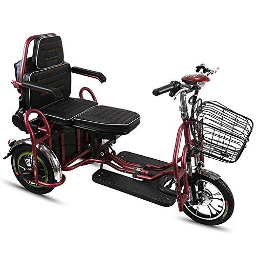 Vespa Ancianos Sillín de Bicicleta Plegable eléctrica Adultos 350w Triciclo eléctrico Doble 48v30ah DDLS