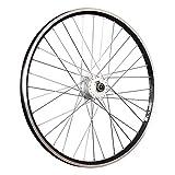 Taylor-Wheels 26 Pulgadas Rueda Delantera Bici ZAC2000 Dinamo buje DH-3N30 Negro