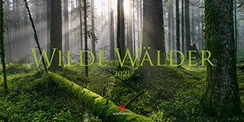 Wilde Wälder Kalender 2021, Wandkalender / Panoramakalender im Querformat (66x33 cm) - Landschaftskalender / Naturkalender