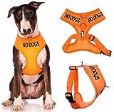NO DOGS Caution Orange Vest