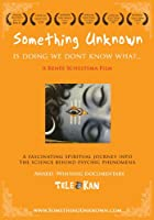 Something Unknown Is Doing We Don't Know What [DVD] [Import]