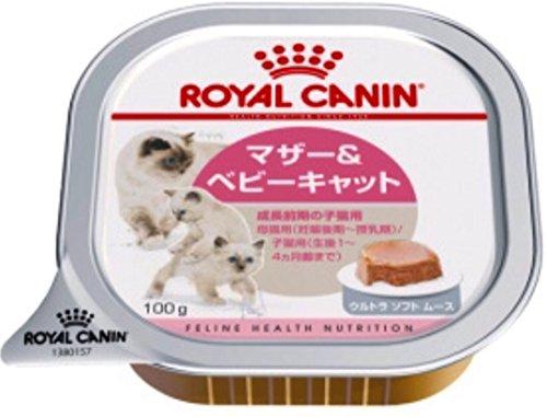 ロイヤルカナン FHN -WET ベビーキャット 猫用 100g×24個