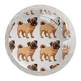 Juego de 4 perillas de armario con diseño de perro carlino de dibujos animados, 4 unidades
