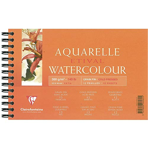Clairefontaine Etival 96062C - Libreta para pintar con acuarelas (de espiral, papel de celulosa, 12 x 18 cm, 12 hojas, 300 g), color blanco