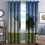 Annery 85%-95% Blackout Lining Curtain Tree on Field Summer Full Shading Treatment Kitchen Insulation Curtain W96 x L108 Inch