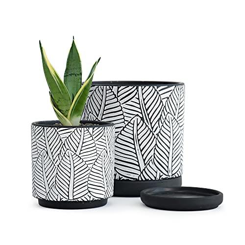 Broadleaf Pattern Planter Pot (2 Pack)