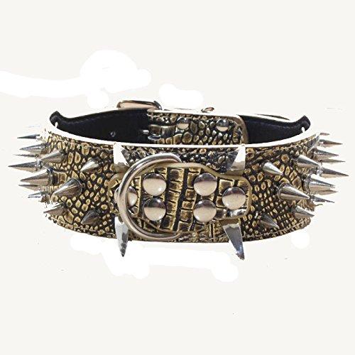 haoyueer Collar de perro con tachuelas afiladas de 5 cm de ancho, elegantes collares de piel para perros medianos y grandes Pitbull, labrador, boxeador Rottweiler pastor alemán... (L, dorado)