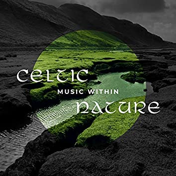 Celtic Music Within Nature: Relaxation Sounds, Relief Time, Healthy Mind, Irish Flute, Celtic Harp