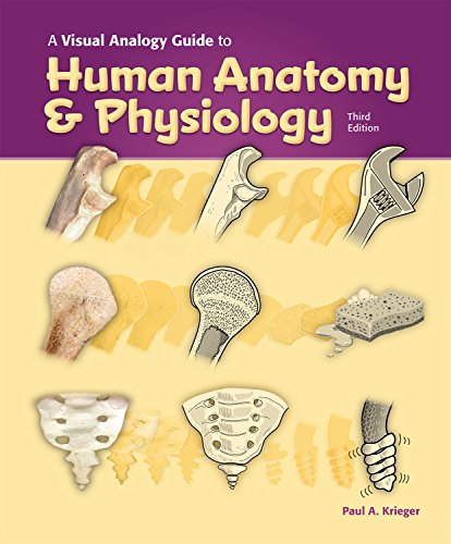A Visual Analogy Guide to Human Anatomy & Physiology, 3e