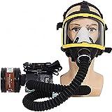 ZDD Fronte Pieno respiratore Maschera Antigas elettrica costante Portata erogata Air Blower Fed/Tubo di respirazione/Caricabatterie/Filter/Maschere e Sicurezza e Protezione Belt Combined