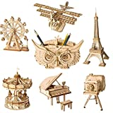 BYFRI DIY 3D Puzzle de Madera Asamblea Modelo Juguetes Juguetes Plano Merry Go Round Noria Pencil Box Juguetes para niños (Random Estilo)