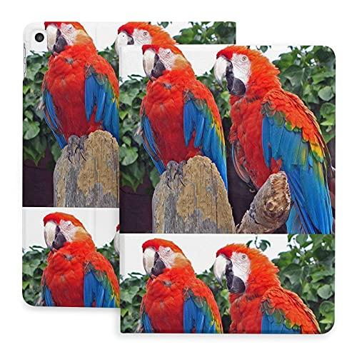 Estuche para pájaros Coloridos Parrot para iPad 8th Gen (2020) / 7th Generation (2021) Folio de visualización de múltiples ángulos con protección de Esquinas de 10,2 Pulgadas