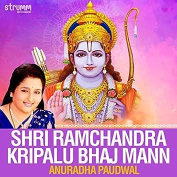 Shri Ramchandra Kripalu Bhaj Mann - Single