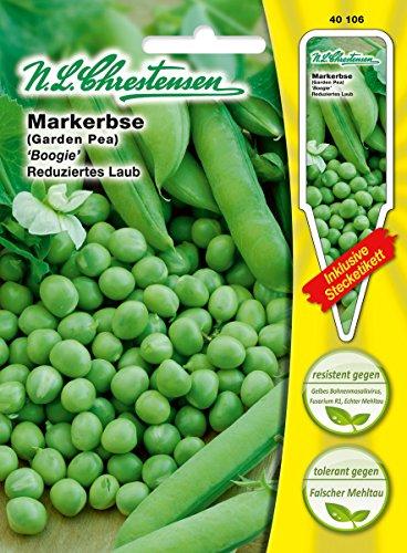 chrestensen 43065/l/égumes RUBAN Graines 11,5/x 0,5/x 15,6/cm beige N.L