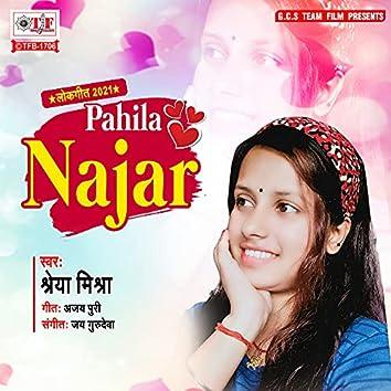 Pahila Najar